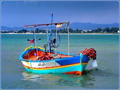 Hammamet : una bella barca da pesca tunisina nel suo elemento naturale