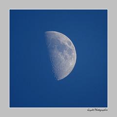 Demi Lune ...