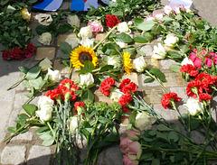 Juni 2012: Blumen zum Gedenken an die 20 NS-Opfer  -  und heute wäre Anne Frank 90 Jahre alt geworden !