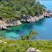 Gran Tentación de revolcarse en ese color !! - Il mare di Izmir - (461)