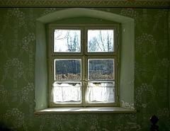 Fenster zum Hof....PiPs!