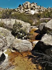 Mountain stream. H. A. N. W. E. Everyone!