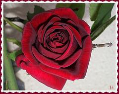 ** Joyeuses St Valentin à ceux qui s'aime ; et à ceux qui passent ici **