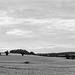 Herts view