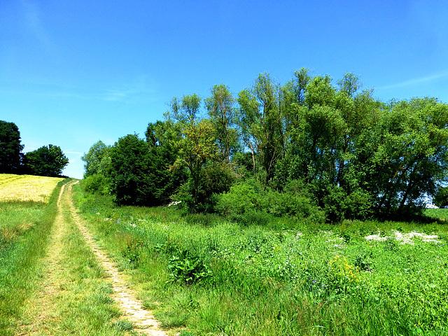 DE - Wierschem - Eltzer Burgpanorama Trail
