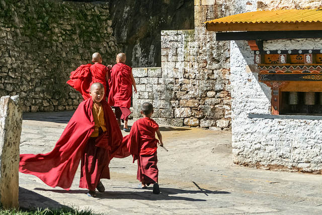 Novice monks at Gom Kora (PiP)