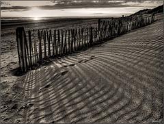HFF – Dune Fence 2