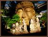 305/365 - Buddha