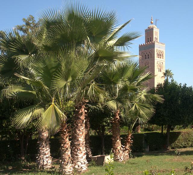 Marrakesch Koutouboia