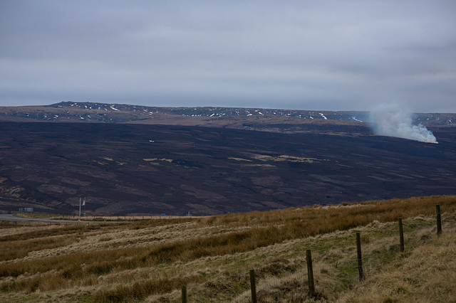 Bleaklow - deliberate heather burning