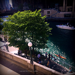 Summer Day's on the Chicago River