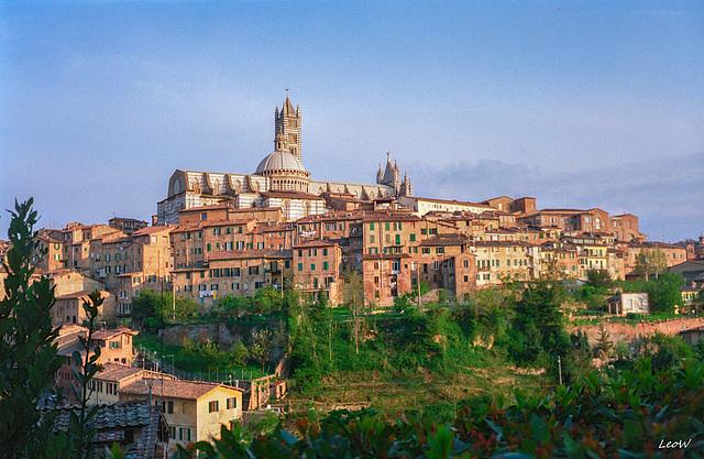 Toskana - Siena