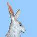 Carousel Rabbit