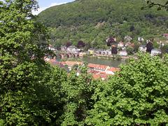 Altstadt mit Blick zur Karl-Theodorbrücke