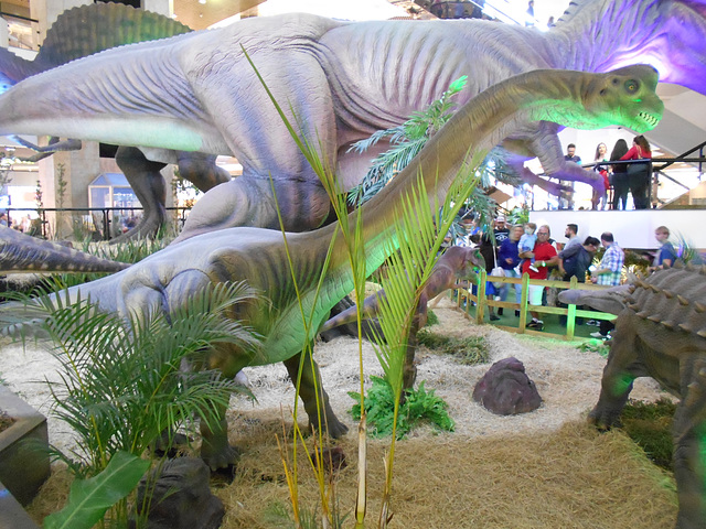 DSCN2712 - Brachiosaurus, Sauropodomorpha