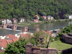 Staustufe Heidelberg
