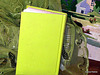 Lime Green Book Cover