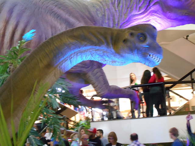 DSCN2713 - Brachiosaurus, Sauropodomorpha