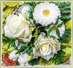 White winter blossoms ...  ©UdoSm