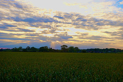 Last sunset of Summer 2020