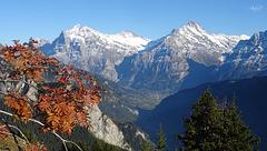 mountain love