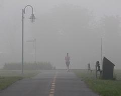 brouillard 3