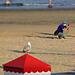 EOS 90D Peter Harriman 19 41 16 69076 weybiza dpp