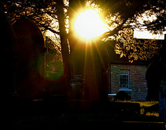 Catching The Light. Wallsend Cemetery