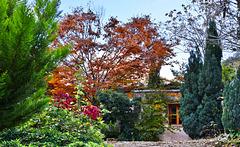 La Casita en otoño
