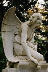 Der Todesengel - Angel of Death - L'ange de la mort