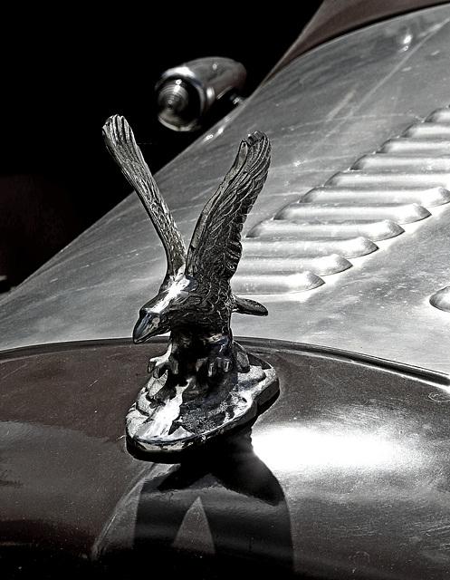 road eagle...mit PiP ;)
