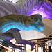 DSCN2717 - Brachiosaurus, Sauropodomorpha