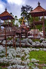 Taman Edelweis