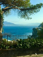 Campania View