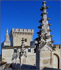 Avignon : Un passaggio sui tetti del palazzo dei Papi