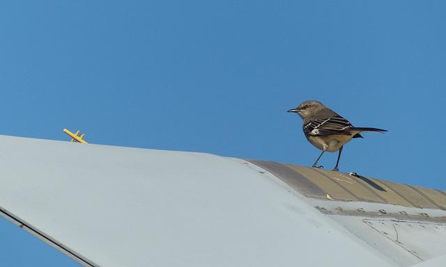 Frontiers of Flight (9) - 14 November 2019