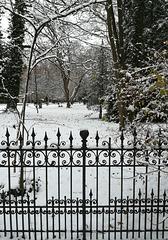 Regensburg snowy park - HFF
