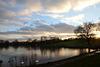Heath dusk