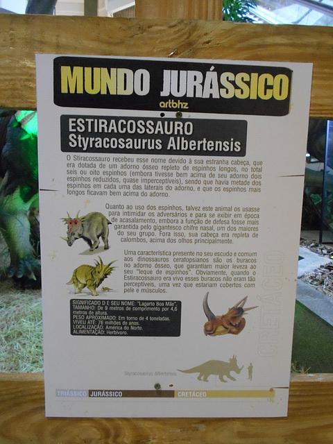 DSCN2723 - Styracosaurus albertensis, Ceratopsidae Ornithischia