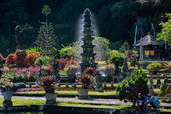 In the park of Tirta Gangga