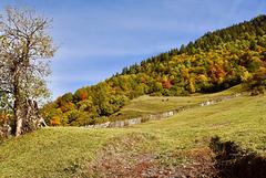 HFF. Autumn in the Caucasus