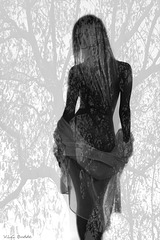she became part of the forest...