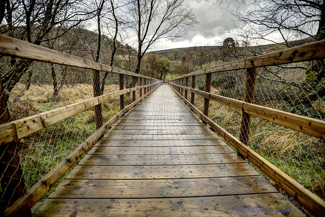 Glendalough 26