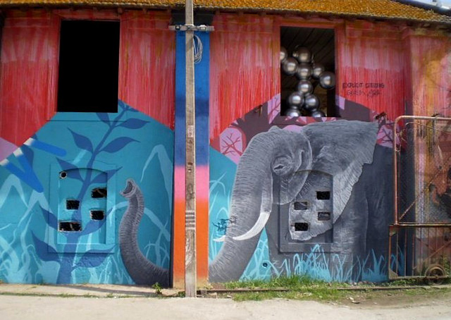 Elephant on the wall.