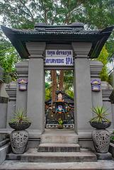 Gate to Toya Devasya