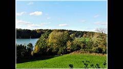 Promenade d'automne dans les bois : Vidéo à partir de mes photos