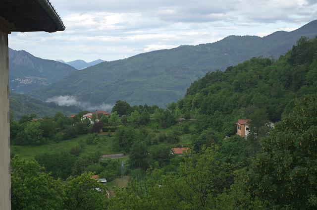 Early morning Tuscan scene