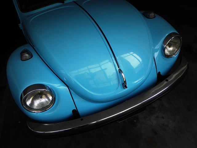 Käfer Blau