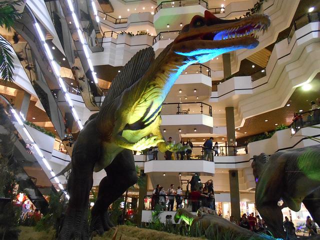 DSCN2736 - Spinosaurus aegyptiacus, Theropoda
