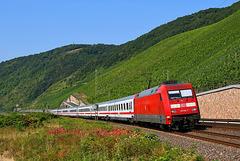 InterCity dans la vallée du Rhin